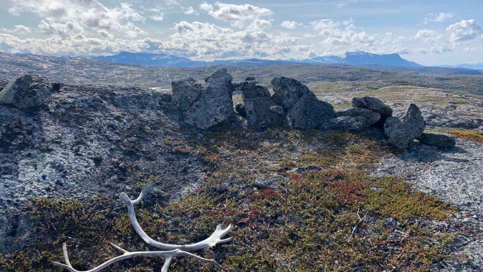 Landskap med rester av stilling og gevir